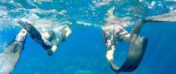 Snorkeling Isola Elba Elba Outdoor escursioni 2021